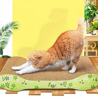 Karmy - корм для собак и кошек премиум класса! №30 — Когтеточки для кошек — Когтеточки