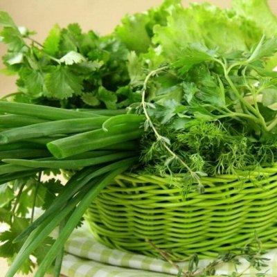 2000 видов семян для посадки!Подкормки, удобрения. — Вкусная, полезная зелень — Семена зелени и пряных трав