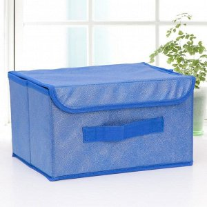 Короб для хранения с крышкой «Фабьен», 26?20?16 см, цвет синий