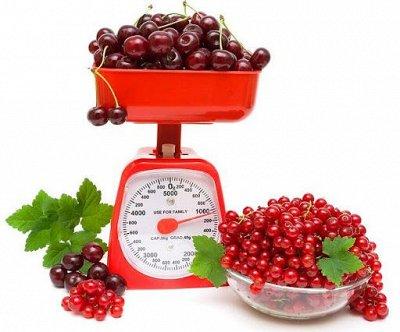 Большая Ликвидация посуды~8*Акции и Скидки тут! — Кухонные весы — Кухонные весы