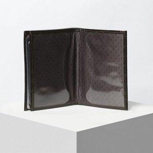 Обложка для автодокументов и паспорта, кайман, цвет коричневый
