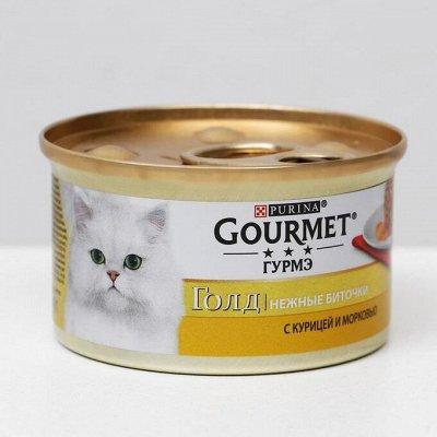 Зоотовары. Все для любимых питомцев — Зоотовары. Товары для кошек. Корма и лакомства для кошек. — Для животных