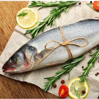 Кальмар по 100р  +орг%, креветка, минтай 283р — Рыбный рынок (только блоками) — Свежие и замороженные