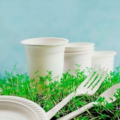 Посуда OneTime - возьми на пикник!