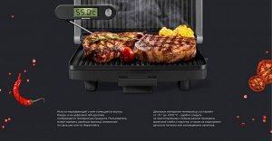 Термометр кухонный REDMOND RAM-KT1