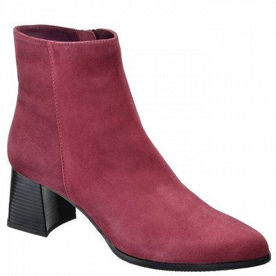 Красивые ножки-2. Натуральная кожа без рядов! — Ботильоны женские — Ботильоны