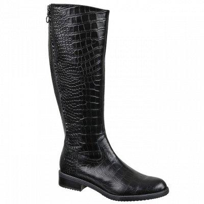 Красивые ножки-2. Натуральная кожа без рядов! — Женские сапоги — Сапоги
