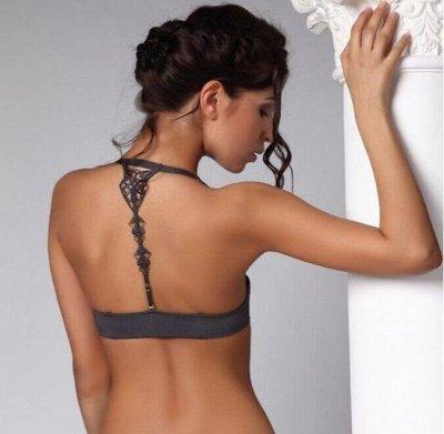 Дамские штучки. Магазин женского белья теперь и на 100sp — Rosa Selvatica Re 38