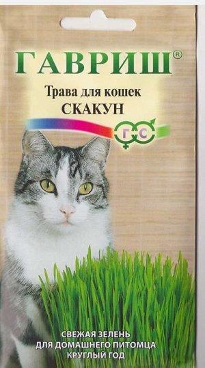 Смесь Трава для кошек Скакун (Код: 4337)