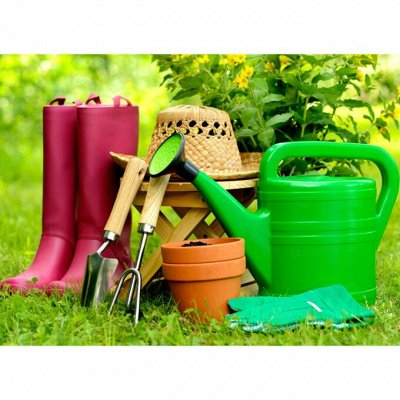 Предзаказ: Луковичные и Саженцы — ТОВАРЫ ДЛЯ САДА И ДОМА — Садовые инструменты