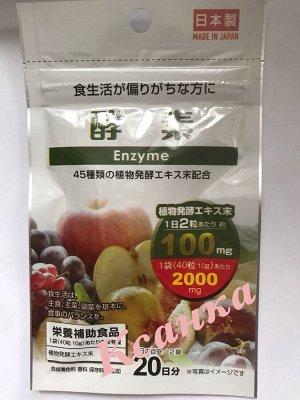 Энзимы и 45 ферментированных овощей