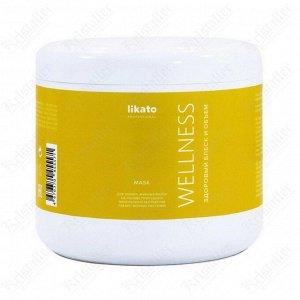Маска для тонких и жирных волос Wellness