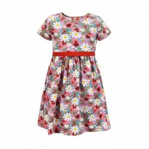 Платье для девочки, насекомые, цвет микс