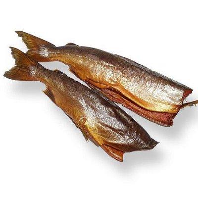 Вкусная Рыбка,морские деликатесы и другие вкусности-6 — НОВИНКИ ИЮЛЯ — Вяленые и сушеные