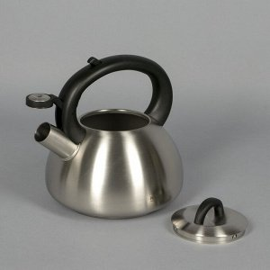 Чайник Vigra, 2,8 л, со свистком