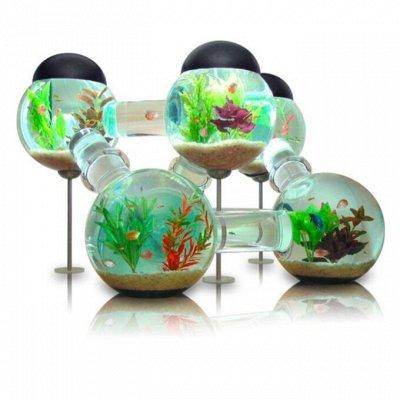 🐶 Догхаус. Быстрая закупка зоотоваров. Всегда есть акции!  — Товары для рыбок и рептилий — Для рыб и рептилий