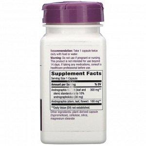 Nature&#x27 - s Way, Andrographis, 300 mg, 60 Vegan Capsules