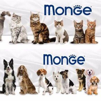 Догхаус. Акция на корма Monge и Мнямс - скидка 45% — Monge — Корма