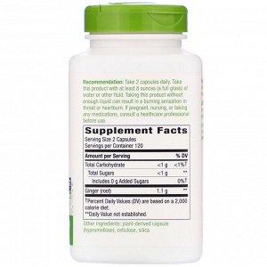 Nature&#x27 - s Way, Ginger Root, 1,100 mg, 240 Vegan Capsules