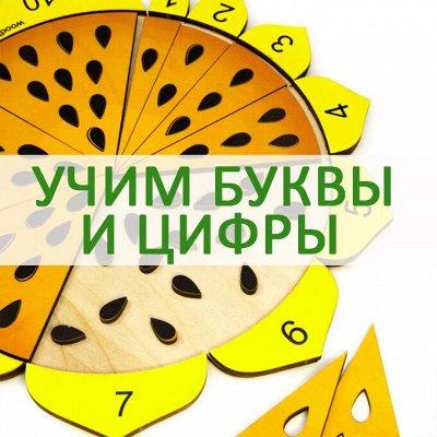Развивающие деревянные игрушки - 28! Новинки! — Изучаем буквы, цифры, счет — Игрушки и игры