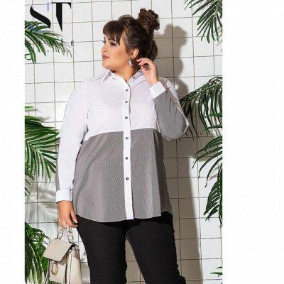 SТ-Style~59*⭐️Распродажа! Летние платья и костюмы! — Супер батал: Рубашки и блузы — Рубашки и блузы