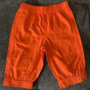 Бриджи цвет оранжевый АКЦИЯ!