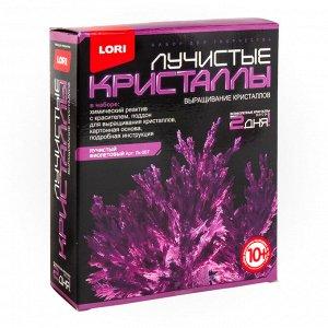 Набор для выращивания кристаллов Лучистый фиолетовый