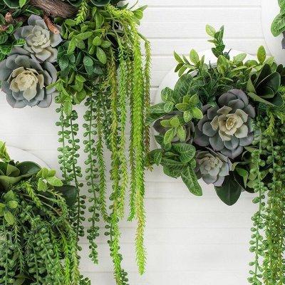 🌴 Искусственные растения, 🌳 флористика, 🌸 фитодизайн — Суккуленты — Кактусы и суккуленты