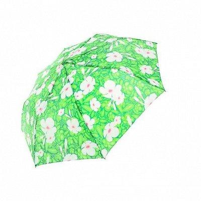 Шапки для всей семьи - 65 Новая осень зонты + лето + СКИДКИ — Женские зонты — Аксессуары
