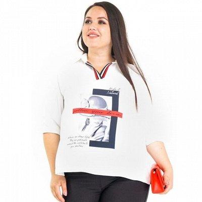 Леди Мари - 165 — Блузки — Рубашки и блузы