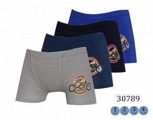 Трусы для мальчиков (шорты/аппликация) 30789