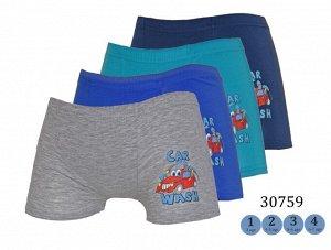Трусы для мальчиков (шорты/аппликация) 30759