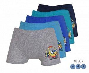 Трусы для мальчиков ( шорты /аппликация) 30587