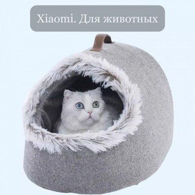 Новинки от Xiaomi. Умные устройства для комфортной жизни ❤   — Xiaomi. Для животных — Для кошек