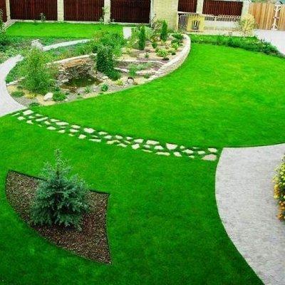 🏡Семена ☘ + Микрозелень + Удобрения — Газон и сидераты — Семена газонных трав