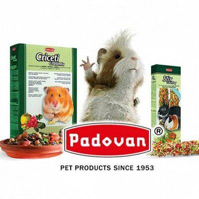 Зверьё Мое 12 - корма, лакомства, аксессуары! — Padovan - корм для птиц и грызунов  — Корма