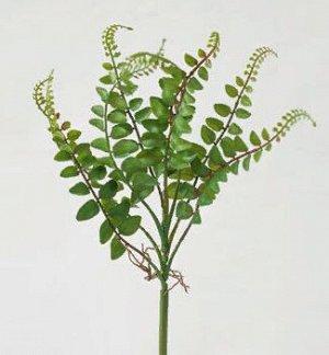 Папоротник вид 3. Искусственные растения