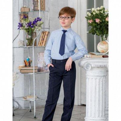 Большой выбор аксессуаров в школу и на праздник — Брюки, костюмы школьные — Одежда для мальчиков