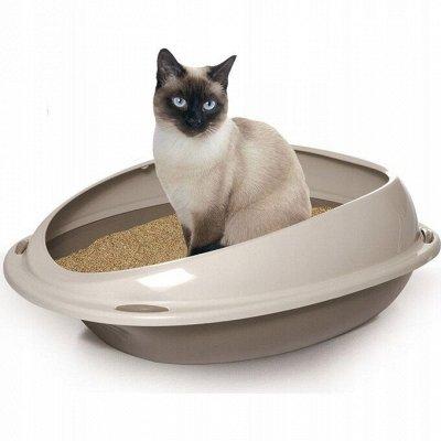 Domosed.online - Товары для животных   — Туалеты для животных и наполнители. Э — Туалеты и наполнители