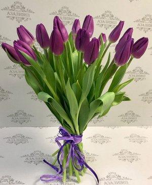 Тюльпан Пурпурный Принц
