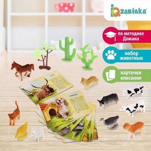 Набор животных с обучающими карточками «Фермерское хозяйство», животные пластик, карточки, по методике Монтессори