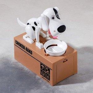 Копилка механическая «Собака с тарелкой», цвета МИКС