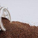 Канихуа Премиум, зерно, (Canihua Premium grain)