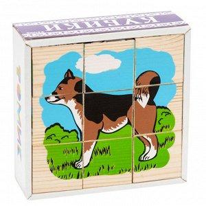 """Кубики """"Домашние животные 9 шт. Томик"""