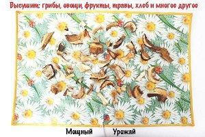 Сушилка для овощей и фруктов Мощный Урожай, 55х85 см., Ромашка