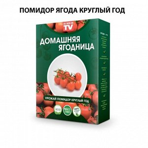 Набор для выращивания Помидор Черри круглый год домашняя ягодница, чудо ягодница, сказочный сбор