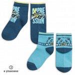 BEG3192(2) носки для мальчиков