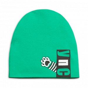 BFQ1202/1U шапка для мальчиков