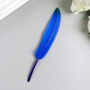 Перья декоративные прямые, 10-15 см (набор 24 шт) 6 цветов, двухцветные, ассорти