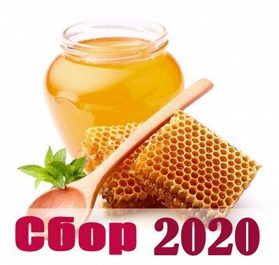 Приморский Вкусный и Полезный Мёд-2020. Быстрая раздача